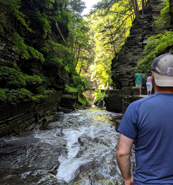 Gorge Trail Robert H. Trehman State Park Gorge Trail and bridge