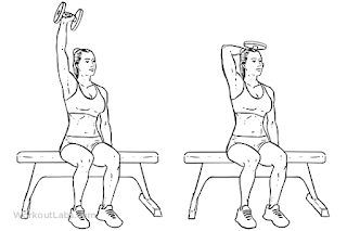 tricep exercise for human