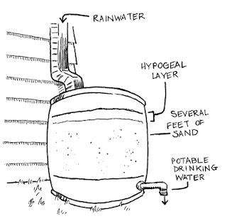 2 Cara Mudah Membuat Penjernih Air Sederhana