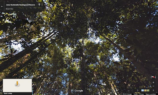 Earth Topo Maps Google Earth Outreach Street View climate change – Maps Google Earth Street View