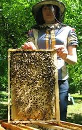 Пчелиный мед - это товар, природный товар.