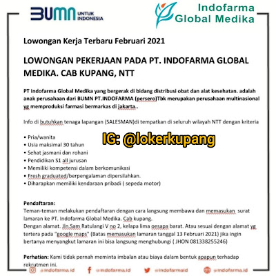 Loker BUMN PT Indofarma Global Medika Cabang Kupang Sebagai Salesman