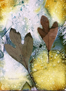 Wet cyanotype_Sue Reno_image 826