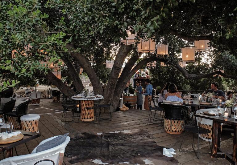Restaurant Report The Urbanist Animalón