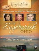 Love Finds You in Sugarcreek, Ohio (2014)