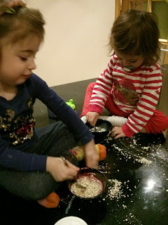 making reindeer food