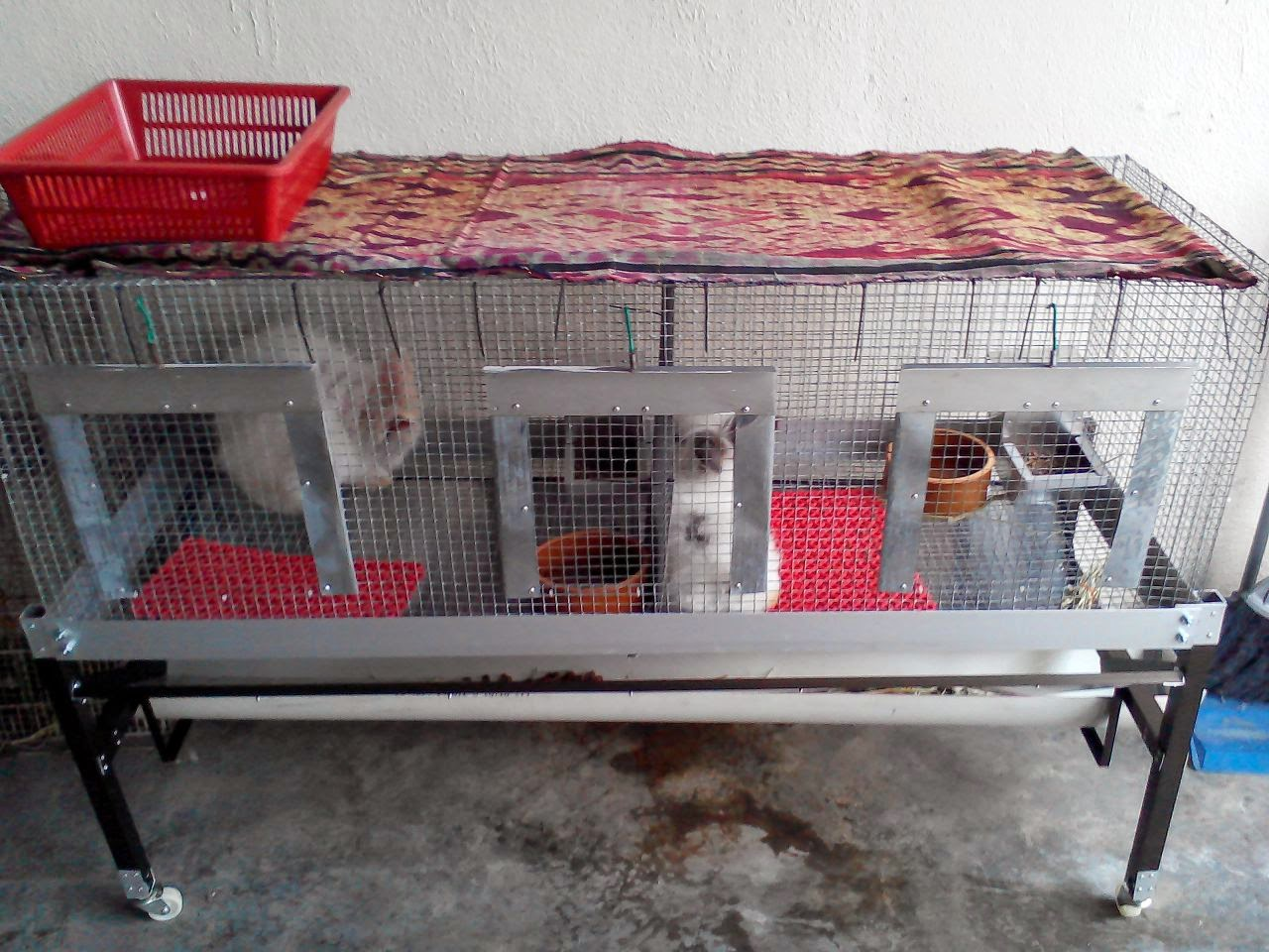 tempahan sangkar arnab dan guinea pig
