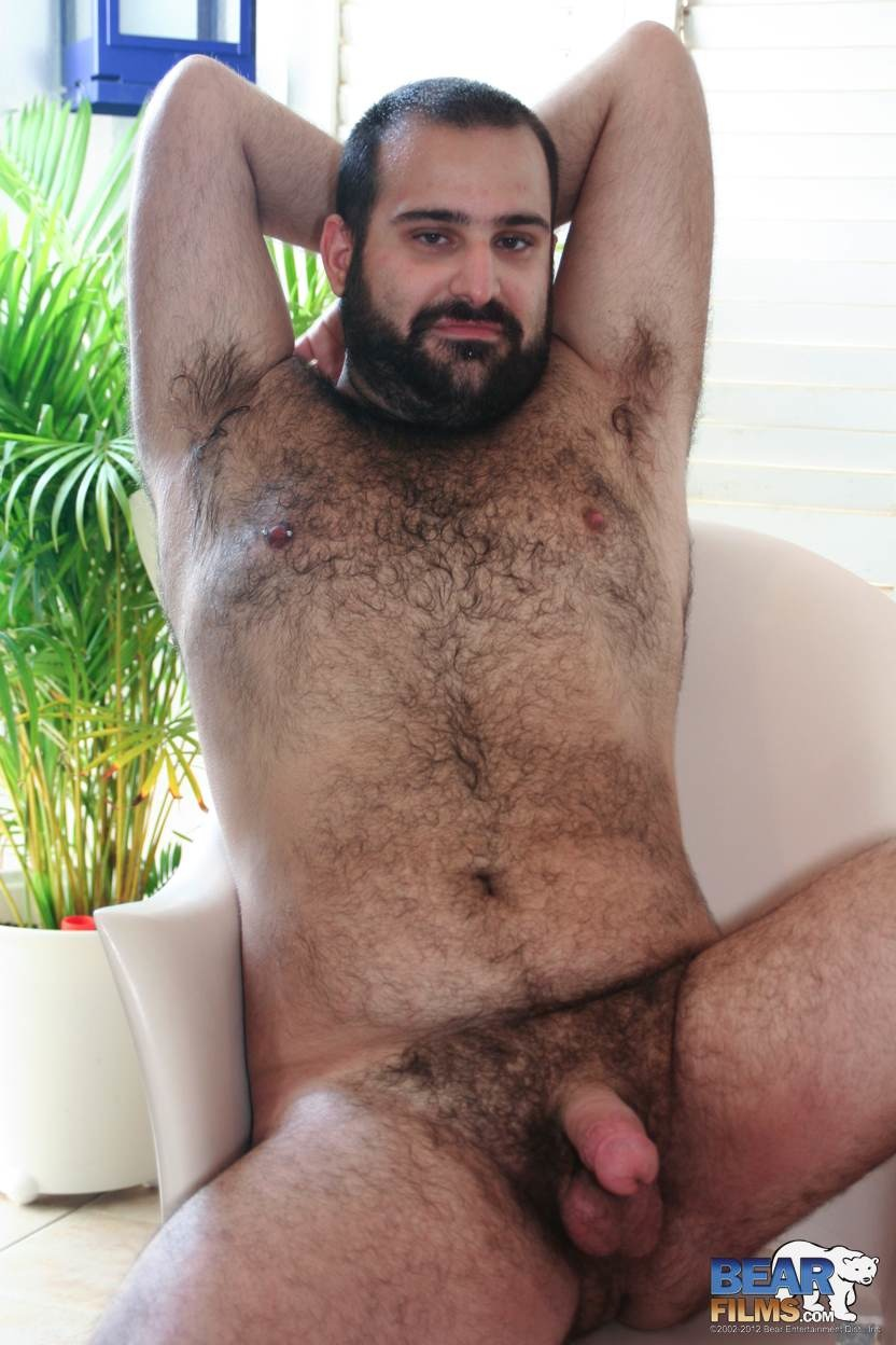 Porn bears