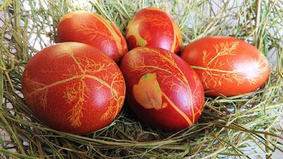 Bojanje jaja u ljusci luka s otiskom bilja i boje/Dying eggs with onion skins flowers and color