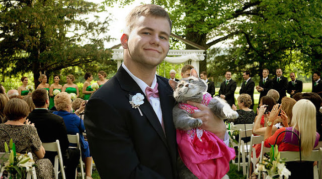 Guy Couldn't Find A Date For Prom So He Took His Cat Instead