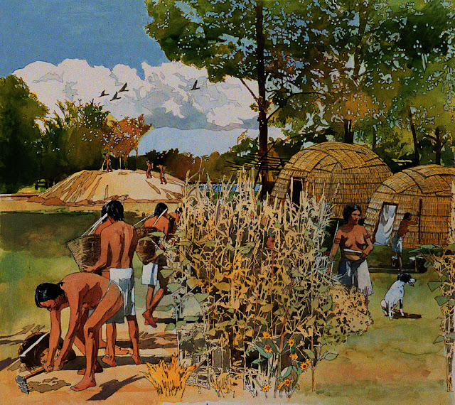 As farming developed, so did cooperation - and violence