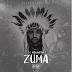 Dj Nelasta - Zuma (Radio Edit) [Download]