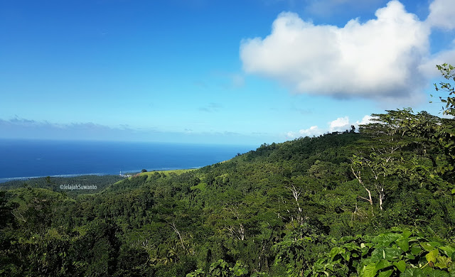 Tutupan kanopi hijau taman hutan rakyat Gunung Tumpa H.V Worang ©JelajahSuwanto