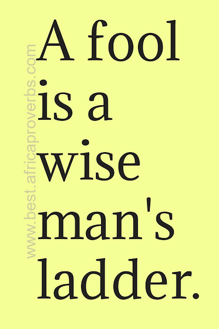 A fool is a wise man's ladder African proverb
