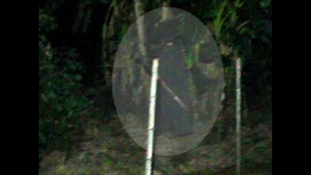 Homem de preto assombra o Ana Terra em Colombo (vídeo)