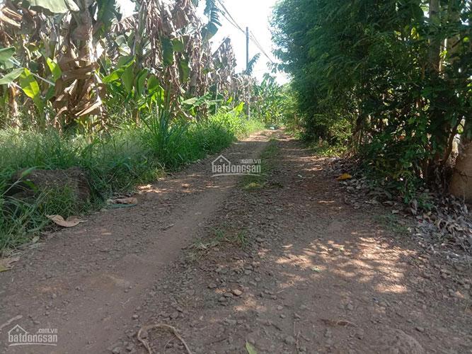 Đất sào Thanh Bình