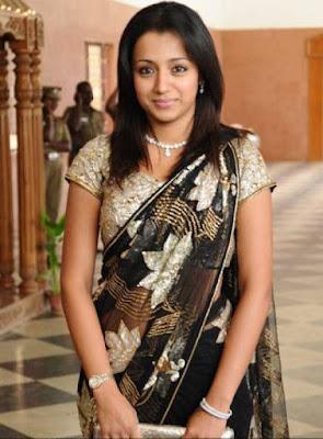 Trisha Krishnan Sexy Photos in Transparent Saree