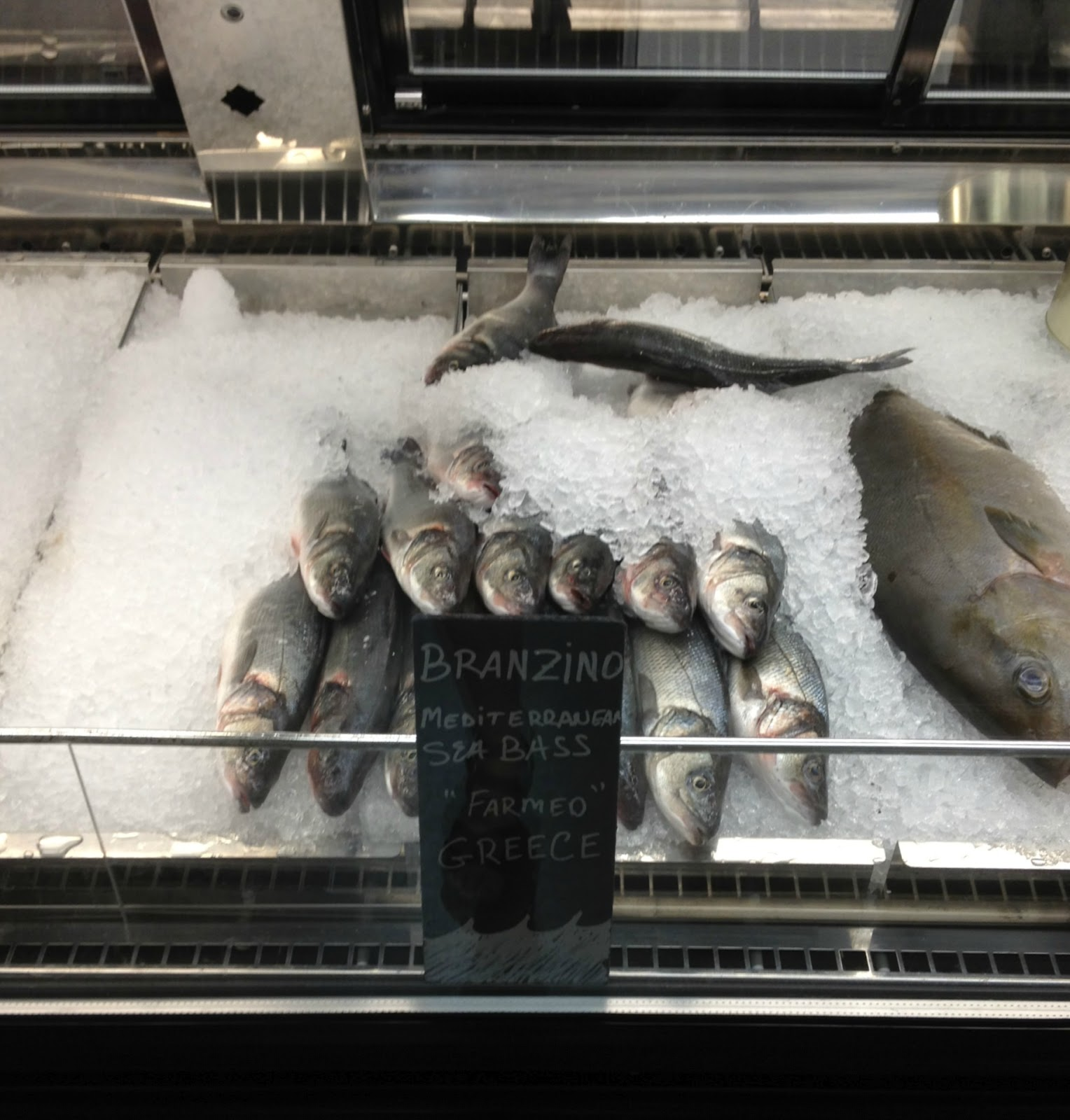 Grouper Fish Recipes