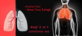 फेफड़ों के बारे आश्चर्यजनक तथ्य Lungs Facts in Hindi