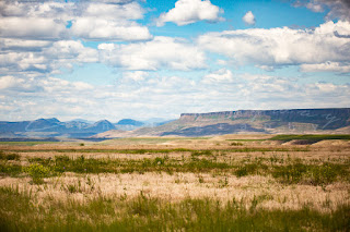 First People's Buffalo Jump