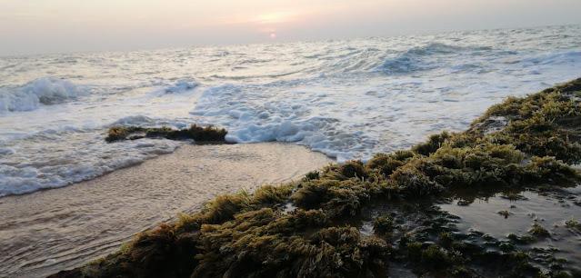 නිදහස් දවසේ ඉර බැස යන සැන්දෑවේ මුහුද අසල 🏖🌊🌊🏖 ( Muhuda [ Sea ] ) - Your Choice Way
