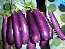 Eggplant, aubergine or brinjal is a plant species in the nightshade family Solanaceae. Solanum melongena is grown worldwide for its edible fruit. Most commonly purple, the spongy, absorbent fruit is used in several cuisines. Typically used as a vegetable in cooking, it is a berry by botanical definition.