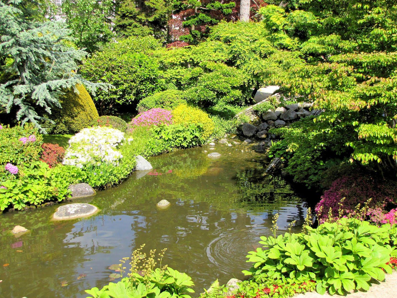 etang japonais aux jardins d 39 albert kahn paysages et fleurs au fil de l 39 eau. Black Bedroom Furniture Sets. Home Design Ideas