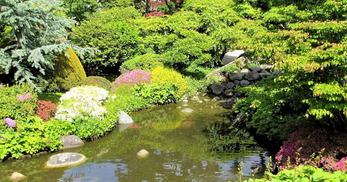 Etang japonais aux jardins d 39 albert kahn paysages et for Albert kahn jardin japonais