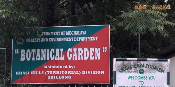 Botanical-Garden-Shillong