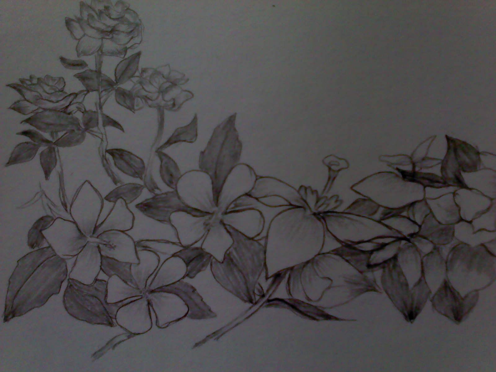 Gambar Sketsa Bunga Batik Sobsketsa