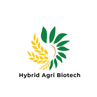Hybrid Agri Biotech is looking candidates for role of Accounts Executive/Accountant
