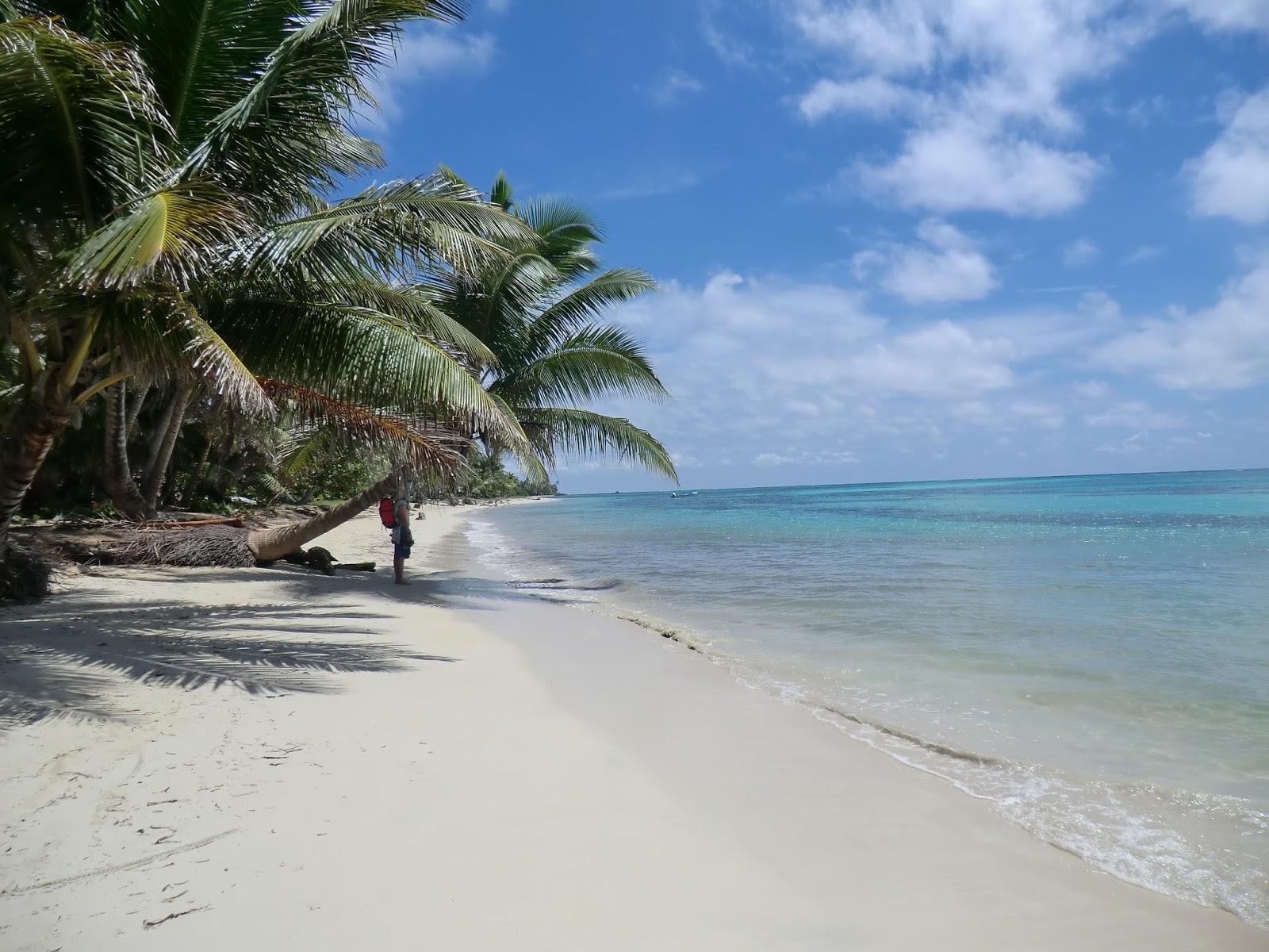 The Best Beaches In Honduras