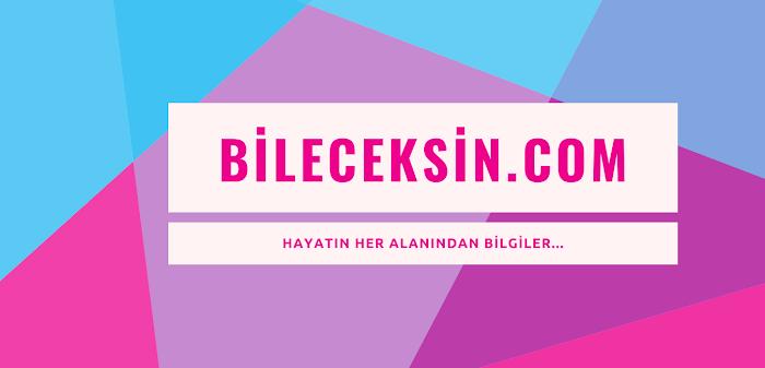 Kardeş Ülke Azerbaycan'ımızın 15 Atasözü