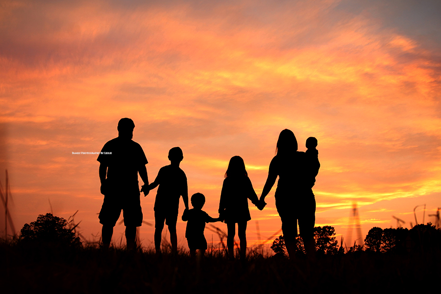 Family Photography: Silhouette Mini | Baby makes 6 ...