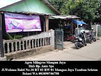 Agen Milagros Mangun Jaya WA 083890746798