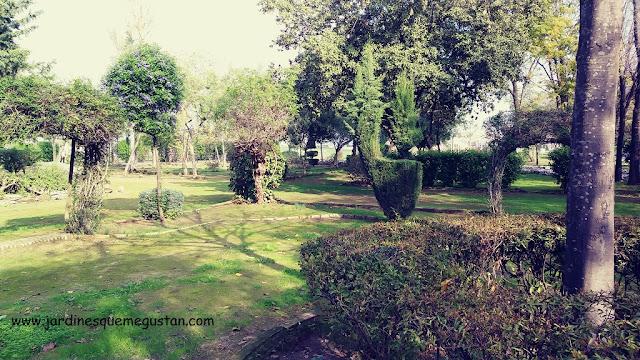 Jardín antiguo