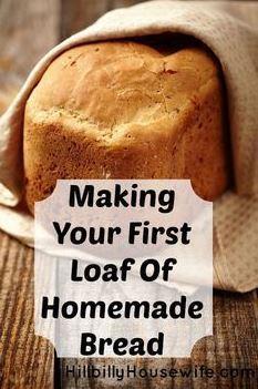 Beginner's Bread