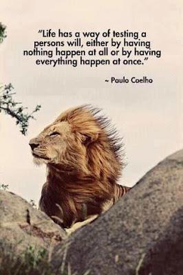 Brilliant Motivational Quotes