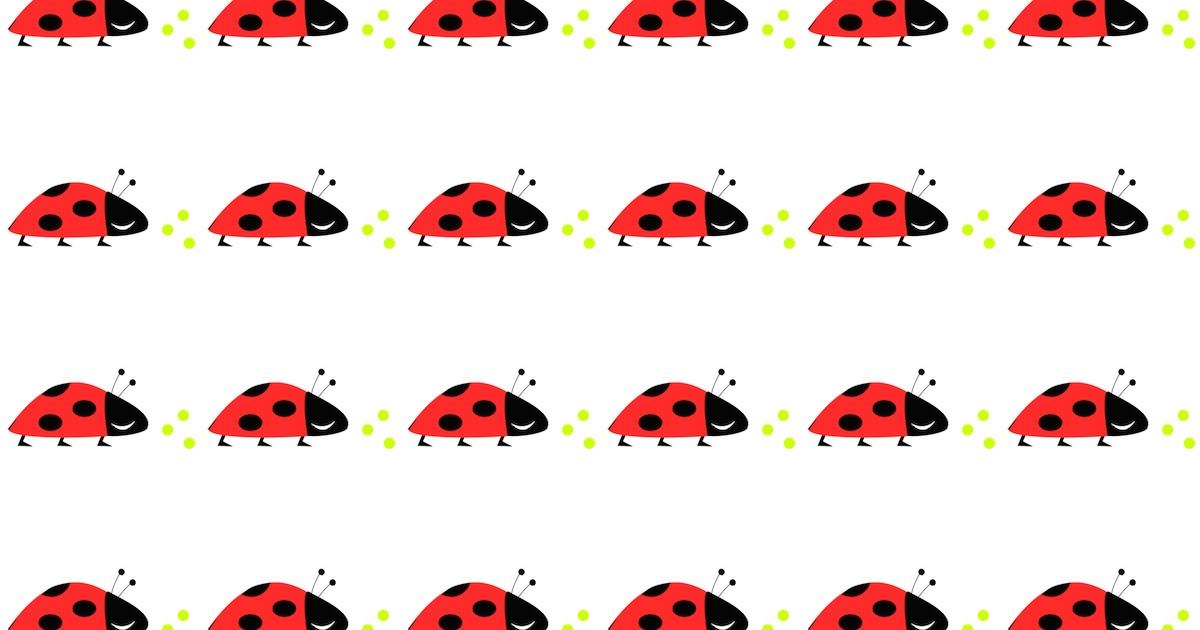 Ladybug essay