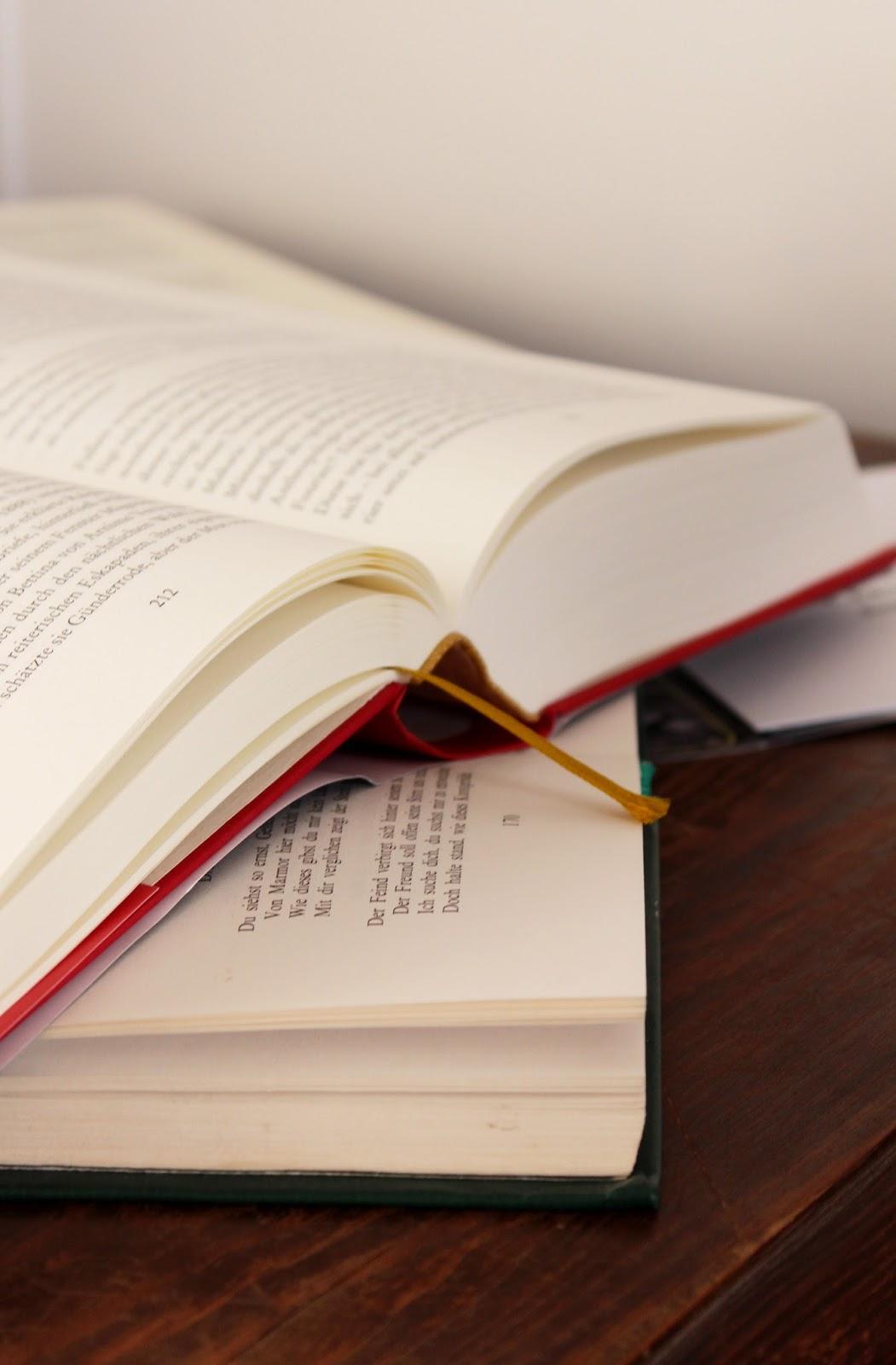 Studium Literatur
