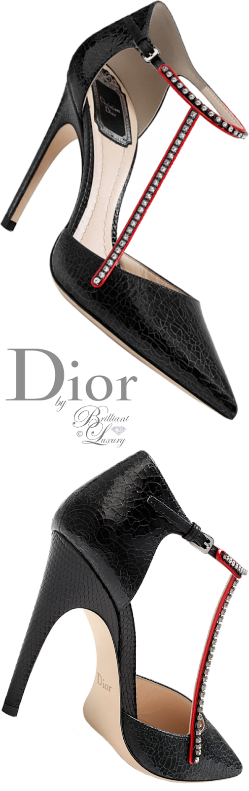 Brilliant Luxury ♦ Dior black crackled deerskin pump