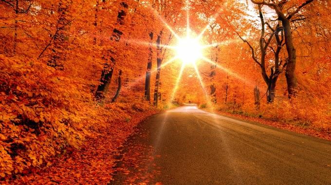 3 знака зодиака, которые осенью добьются больше, чем ожидали
