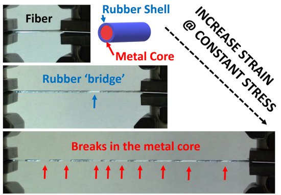 New Developed Fiber is as Flexible as Elastic But Tough as Steel