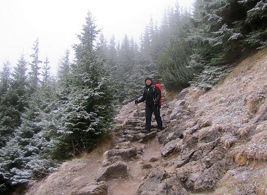 Zejście do Doliny Jaworzynka.
