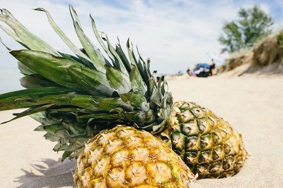 most interesting facts about pineapple
