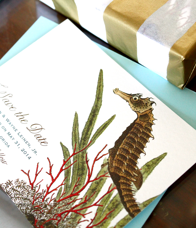seahorse save the date from Concertina Press