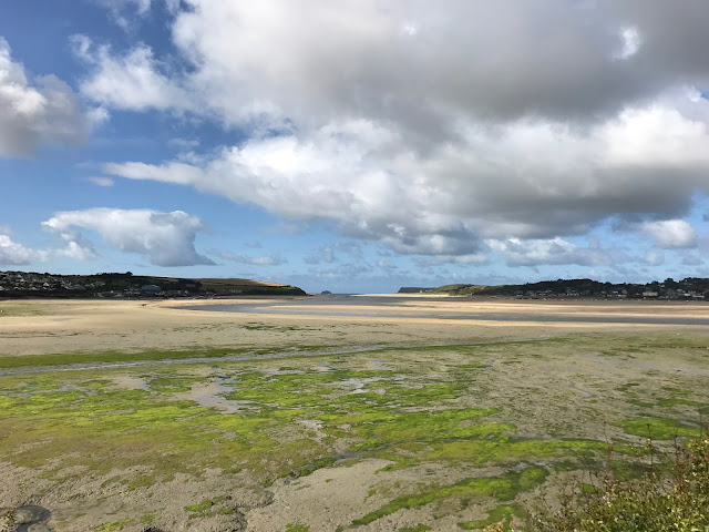 Camel Estuary from the Camel Trail, Padstow, Cornwall