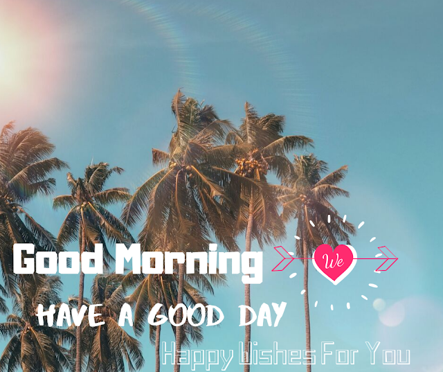 Good Morning  Images With Shining Sun