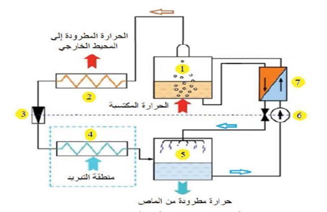 دورة الامونيا -ماء الامتصاصية