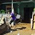 La UE destina 1,8 millones de dólares para los damnificados de Eta en Centroamérica